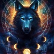 wolf006