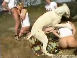 Zoophilia addictes suck the dog's dick and get banged hard