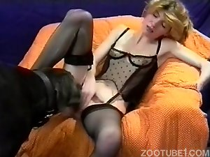 Busty female gets her pussy licked by a sweet black doggy
