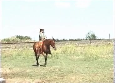 Moana pozzi with horse in fantastica moana 1987 2