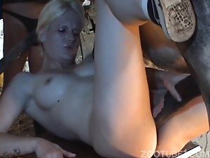 Chicks watch how skinny blonde has sex with stallion in stable