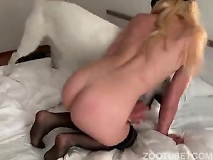 Dogsucking milf in action