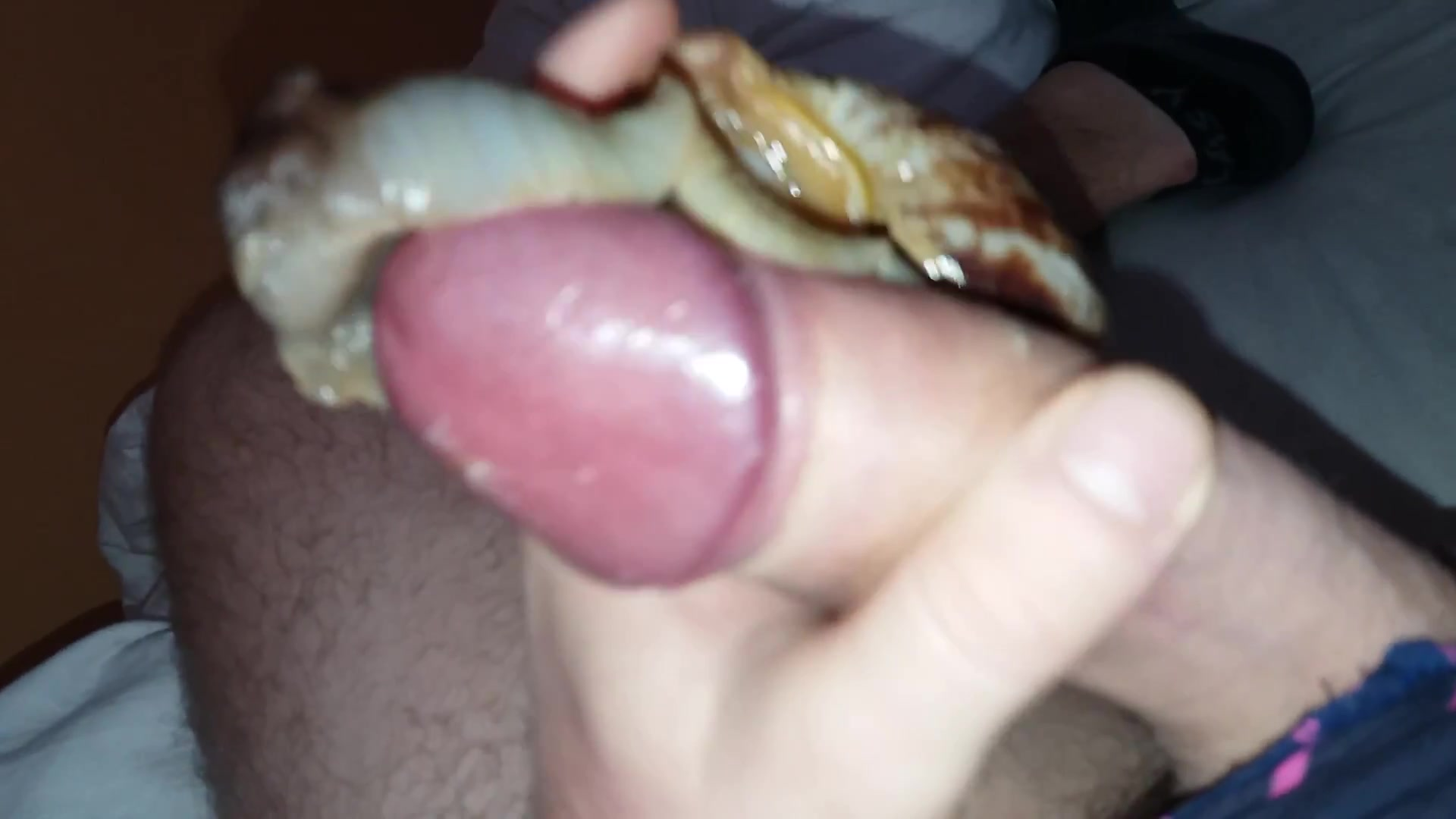 One big snail cumshot