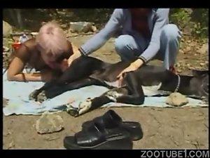 Belle salope suce une bite de chien